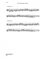 2-8ve chromatic scales_vn