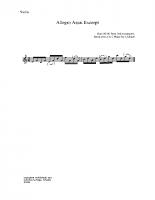 Allegro assai excerpt_vn
