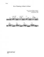 Bow plan Bach a minor_va