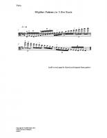 Rhythm patterns in 3-8ve scale_va